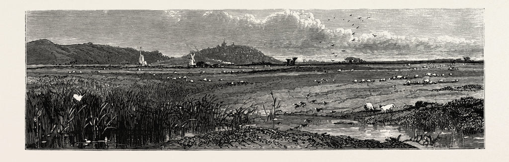 Detail of Distant View of Rye, Kent by Anonymous