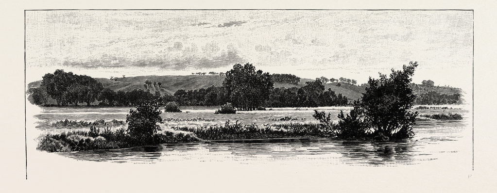Detail of Cannock Chase, from the Trent by Anonymous
