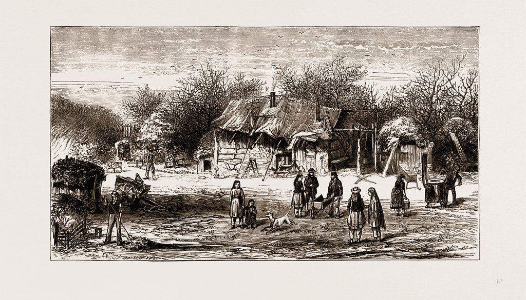 The Shakers' Present Encampment In The New Forest