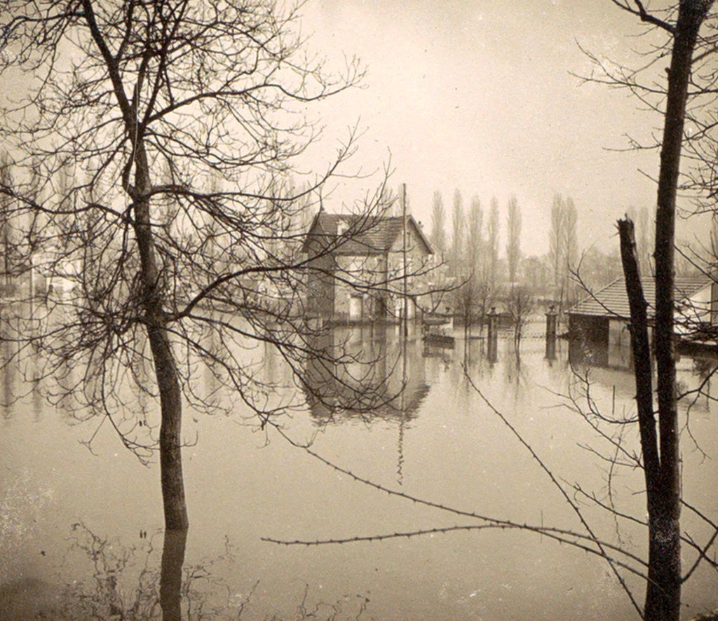 Detail of Houses in flooded suburb of Paris seen through bare trees, France by Anonymous