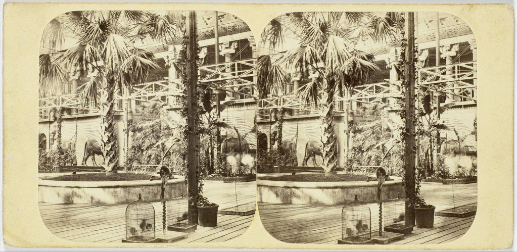 Detail of Crystal Palace The Great Palm, and Nineveh Court, Tropical Department by The London Stereoscopic Company