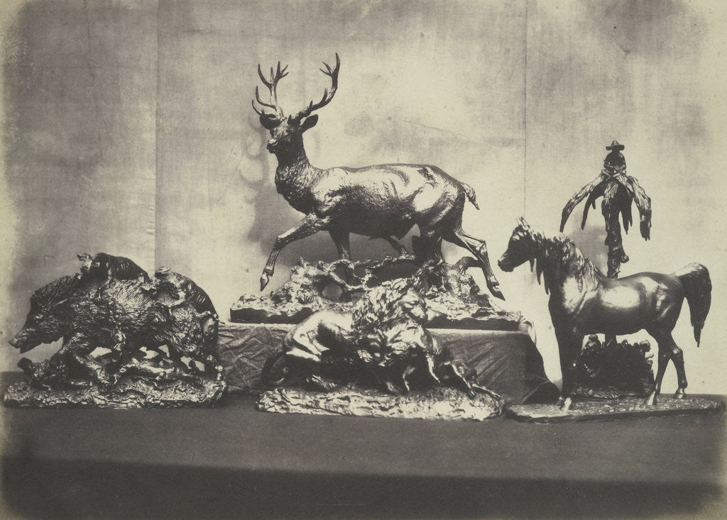 Detail of Castings of Animals by C.M. Ferrier & F. von Martens