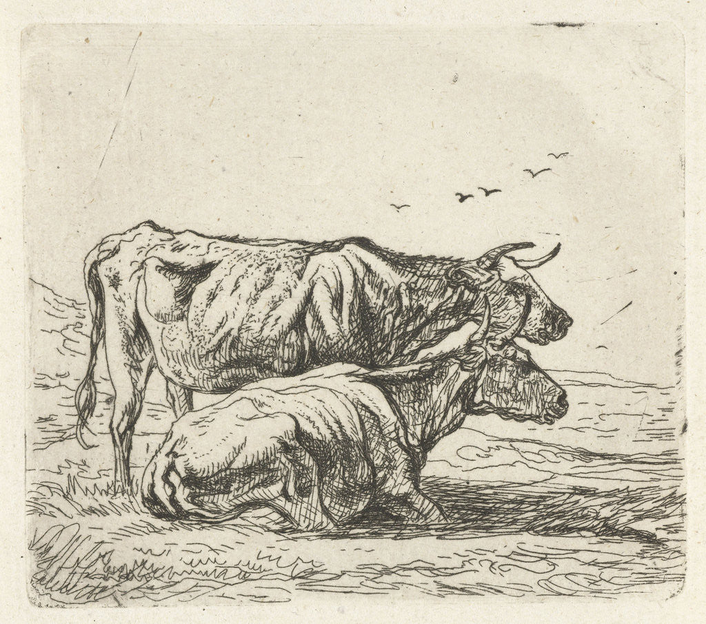 Detail of Two cows by Aelbert Cuyp