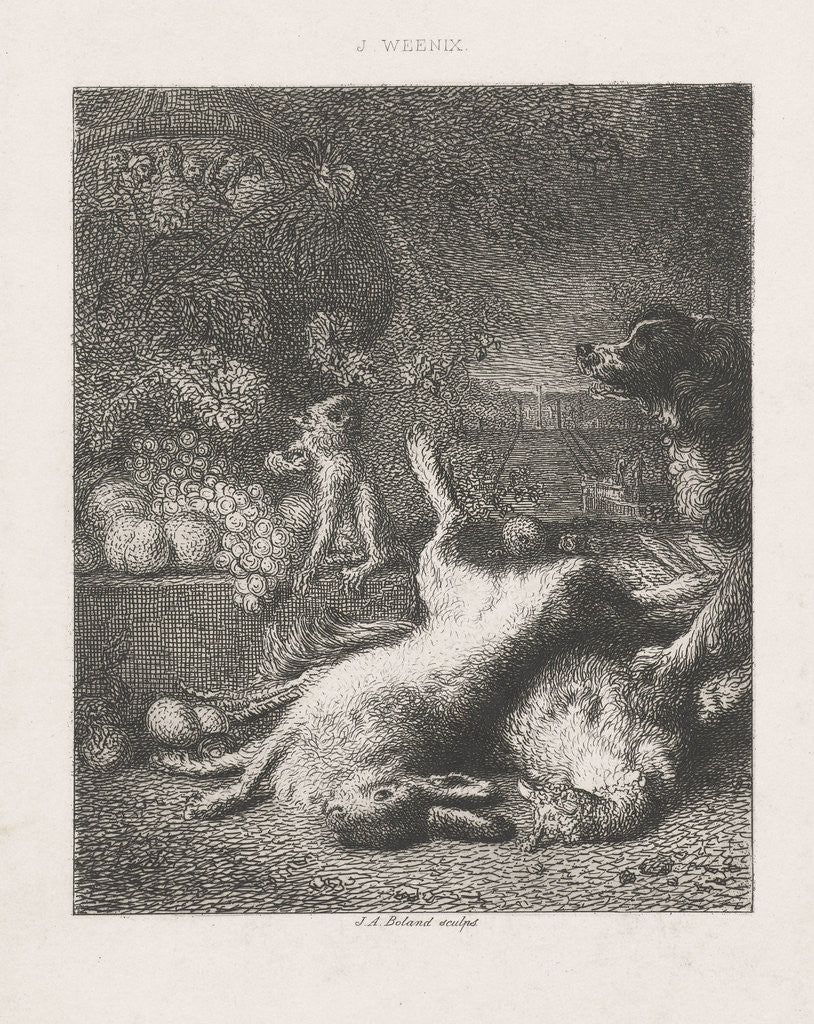Detail of A monkey and a dog and fruits by Johannes Arnoldus Boland