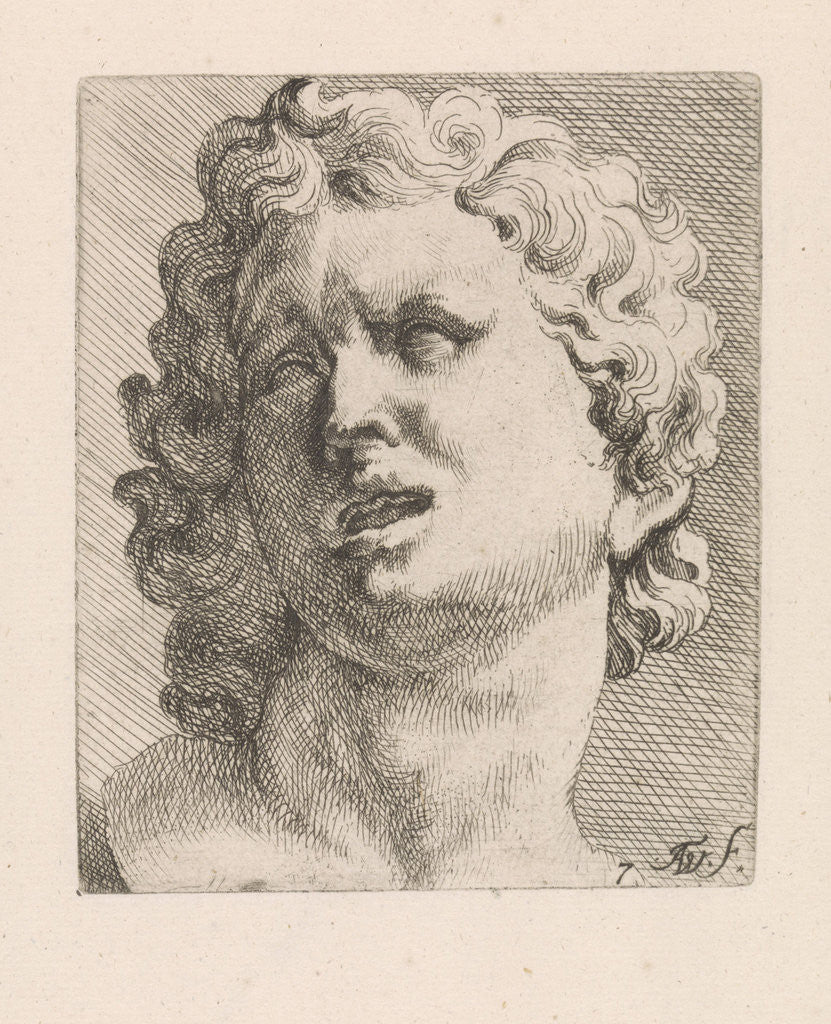 Detail of Head of one of the sons of Laocoön, front view by Augustinus Terwesten I