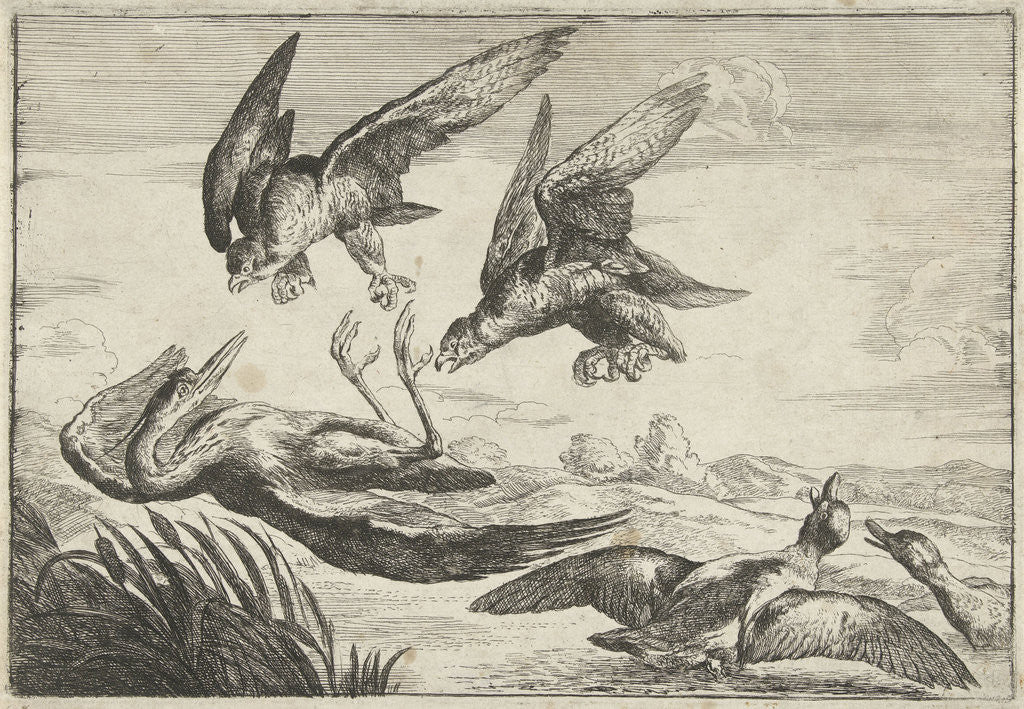 Detail of Two falcons attack a heron by Peeter Boel