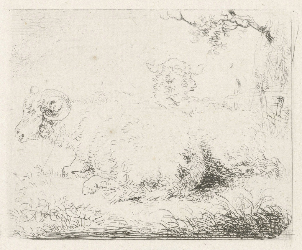 Lying sheep and ram by Pieter Gerardus van Os