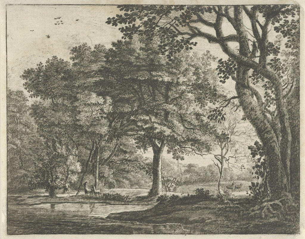 Detail of Deer in The Hague Forest by Roelant Roghman