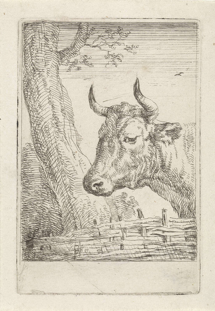 Detail of Cow at a willow fence, Aert Schouman by Paulus Potter