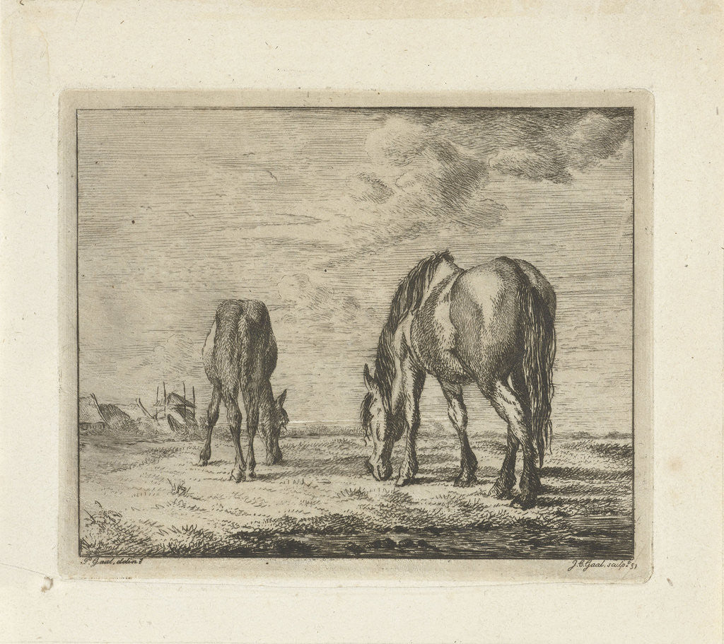 Detail of Two grazing horses by Jacobus Cornelis Gaal
