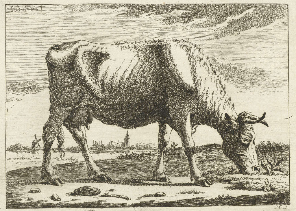 Detail of landscape with grazing cow by Cornelis Bisschop
