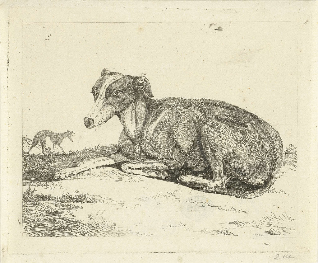 Detail of Greyhounds by Jan Dasveldt
