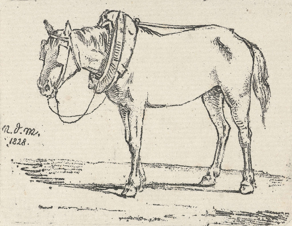 Detail of Refitted horse by Anthonie Willem Hendrik Nolthenius de Man