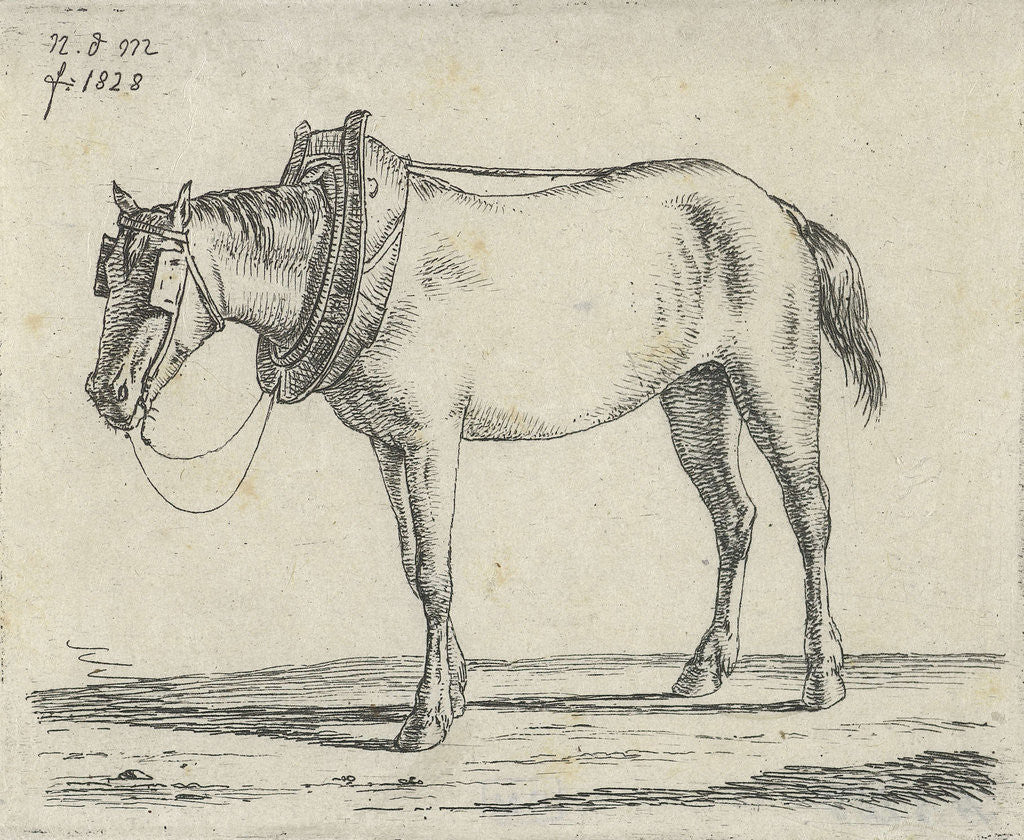 Detail of Draft Horse by Anthonie Willem Hendrik Nolthenius de Man