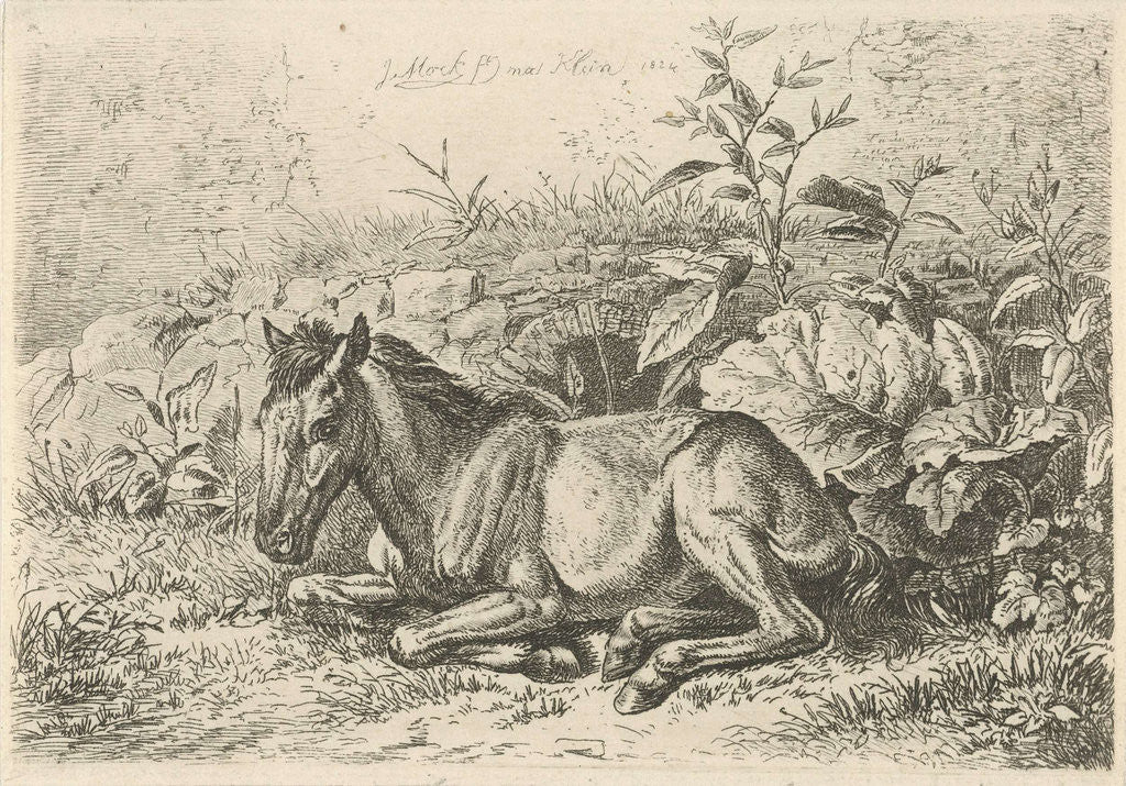 Detail of Lying horse for some plants by Johannes Mock