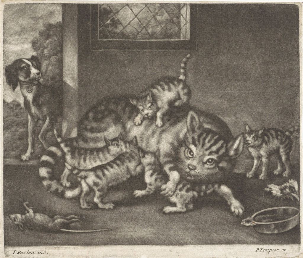 Detail of Cat with five kittens by Pierce Tempest