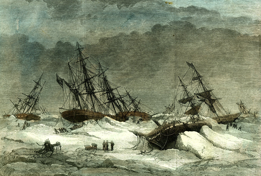 Detail of Lapland Wrecks 1867 on the Coast Caused by the Ice in the White Sea Destruction Suffering Crew by Anonymous