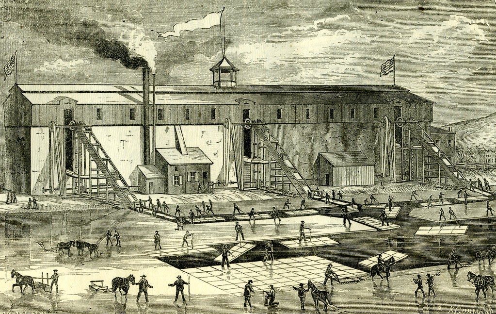 Detail of Ice Industry U.S.A. 1881 Winter View of Elevating Ice Into Buildings by Anonymous