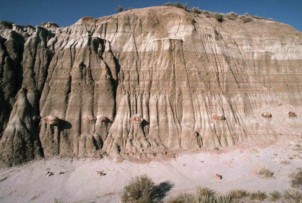Detail of Badlands in Theodore Roosevelt National Park by Corbis
