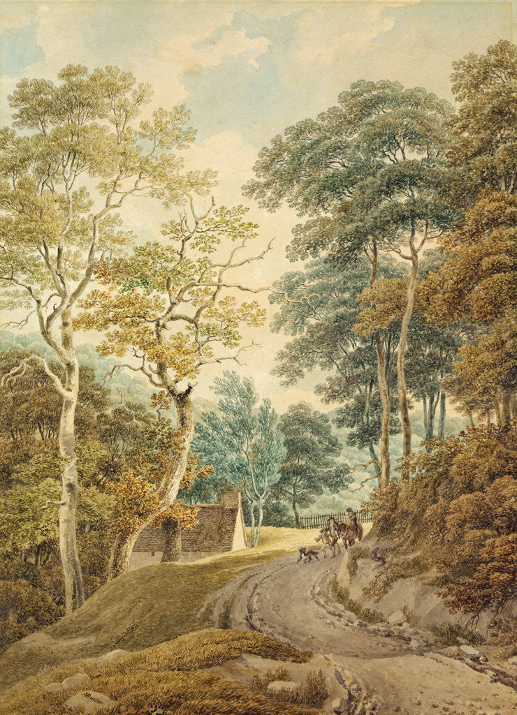 Detail of A Lane near Hindhead by Michael Rooker