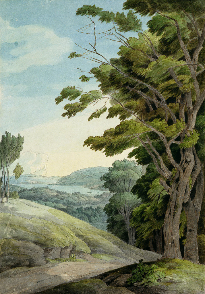 Detail of View from Rydal Park by Francis Towne