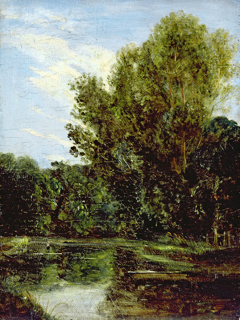 Detail of Corner of Hampstead Ponds by John Constable