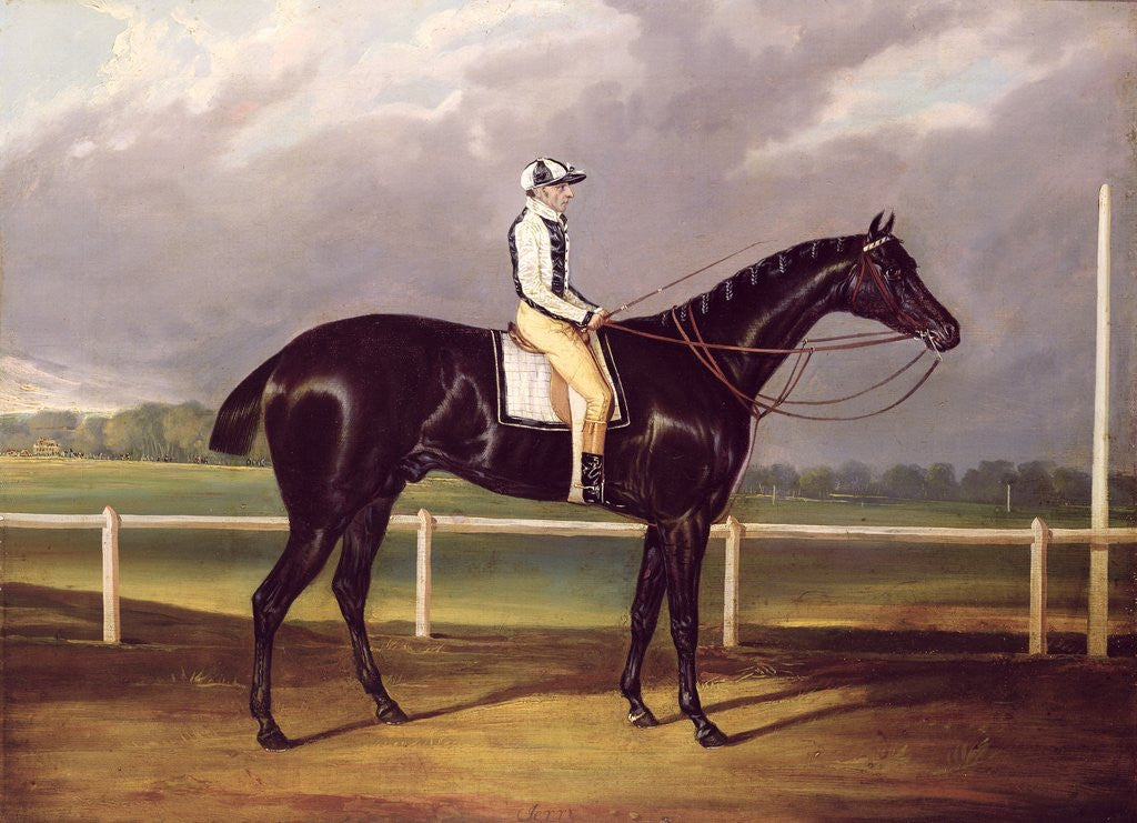 Detail of Jerry, Winner of the St. Leger in 1824 by English School