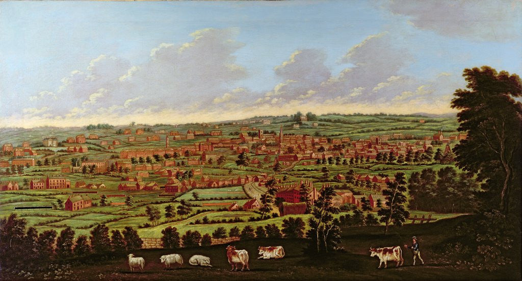 Detail of Prospect of Leeds, c.1800 by Nathan Theodore Fielding