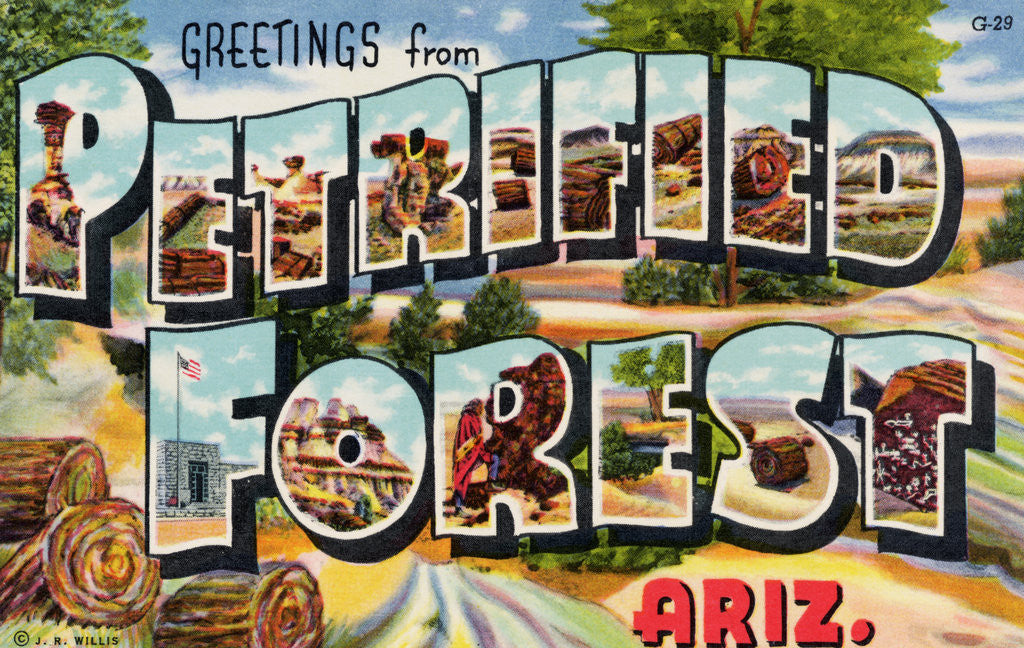 Detail of Greetings from Petrified Forest, Arizona Postcard by Corbis