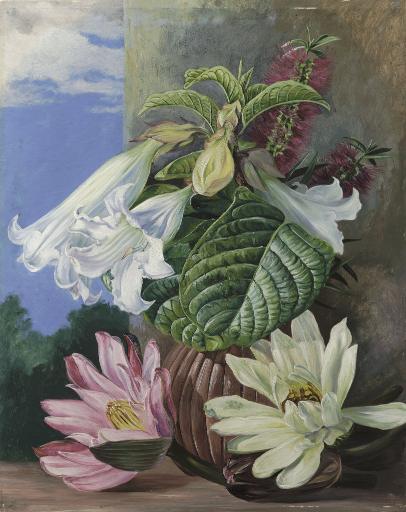 Detail of 46. Flowers cultivated in the Botanic Garden, Rio Janeiro, Brazil. by Marianne North