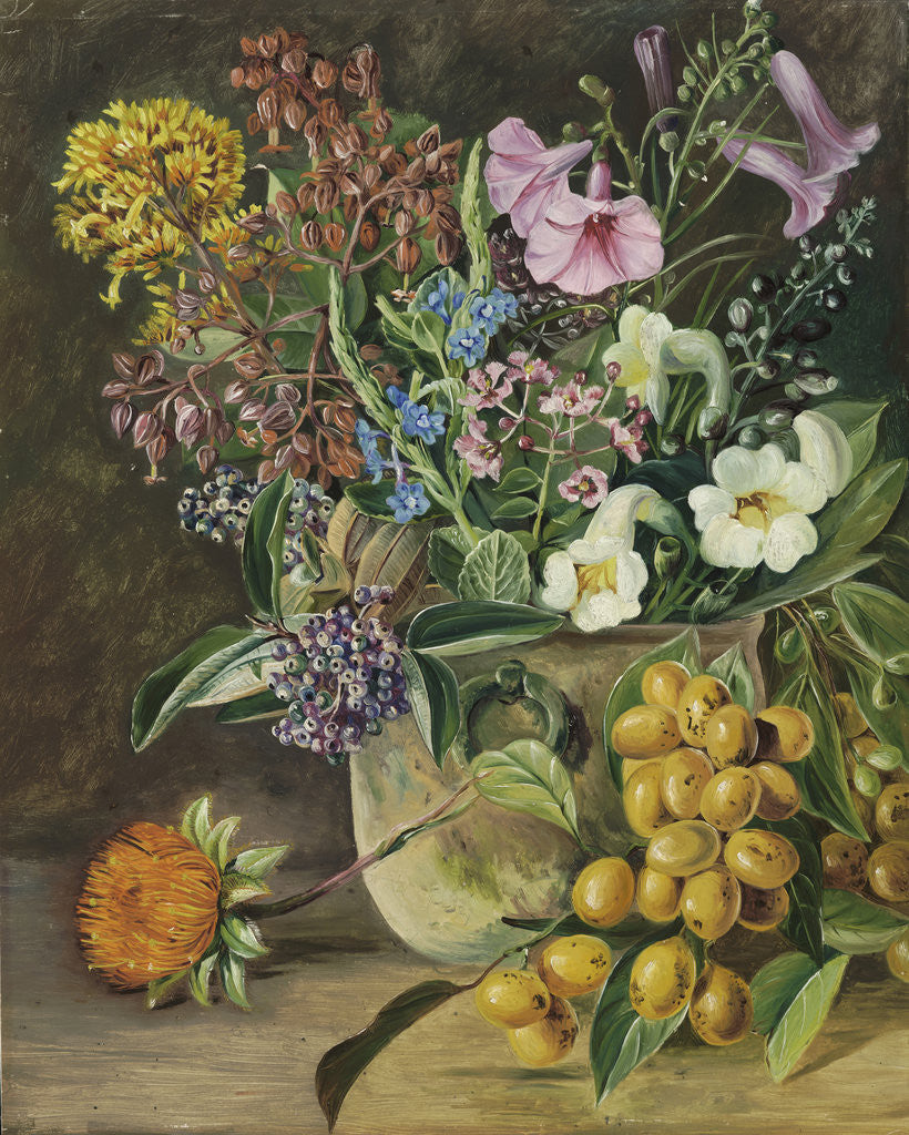 Detail of 87. Group of Brazilian Forest Wild Flowers and Berries. by Marianne North
