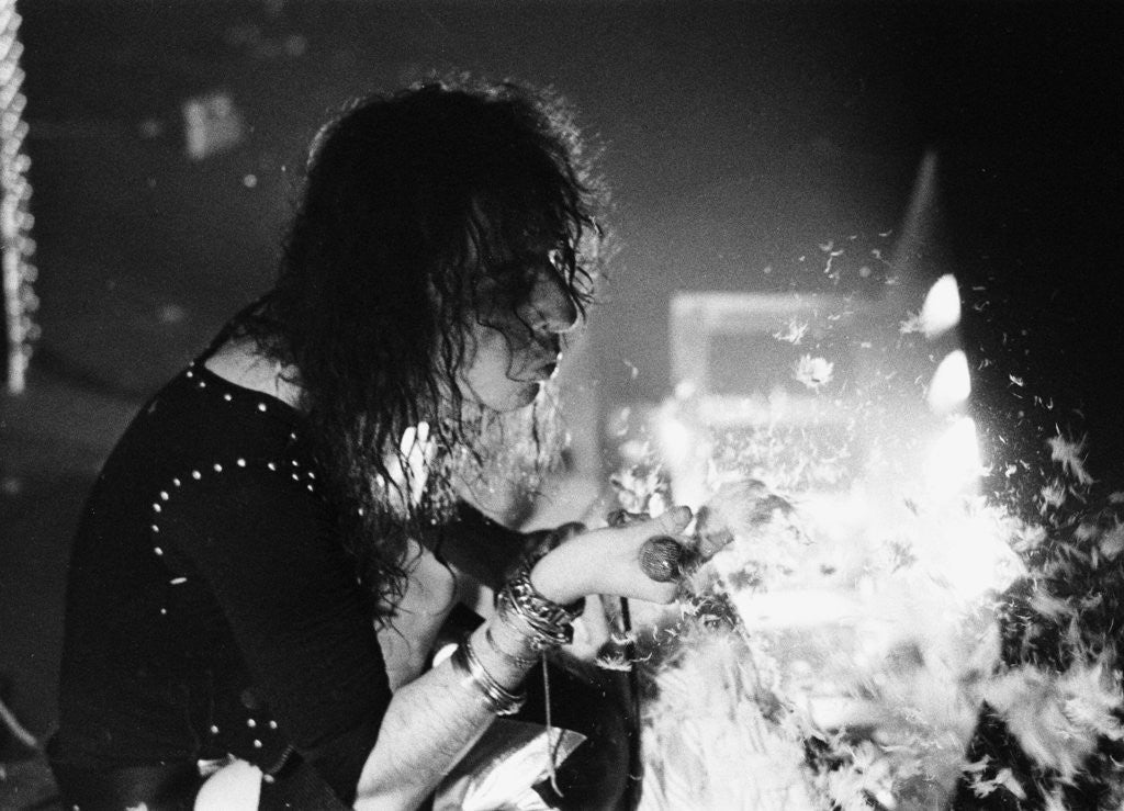 Alice Cooper blows feathers into the crowd by Peter Stone
