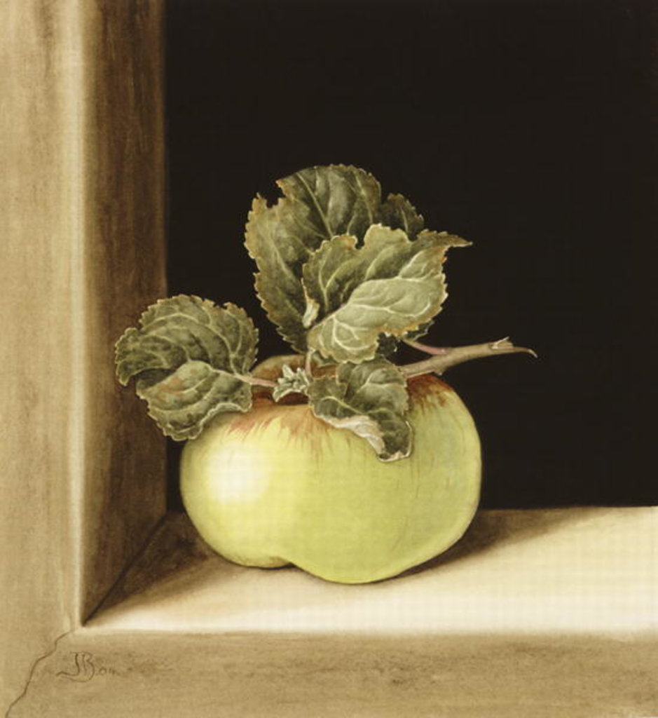 Detail of Apple by Jenny Barron