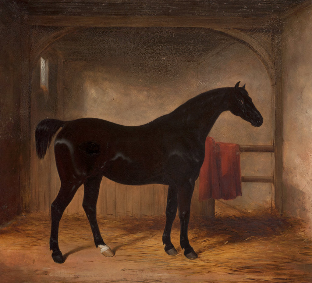 Detail of Black horse in a loose box, 1836 by William Henry Barraud
