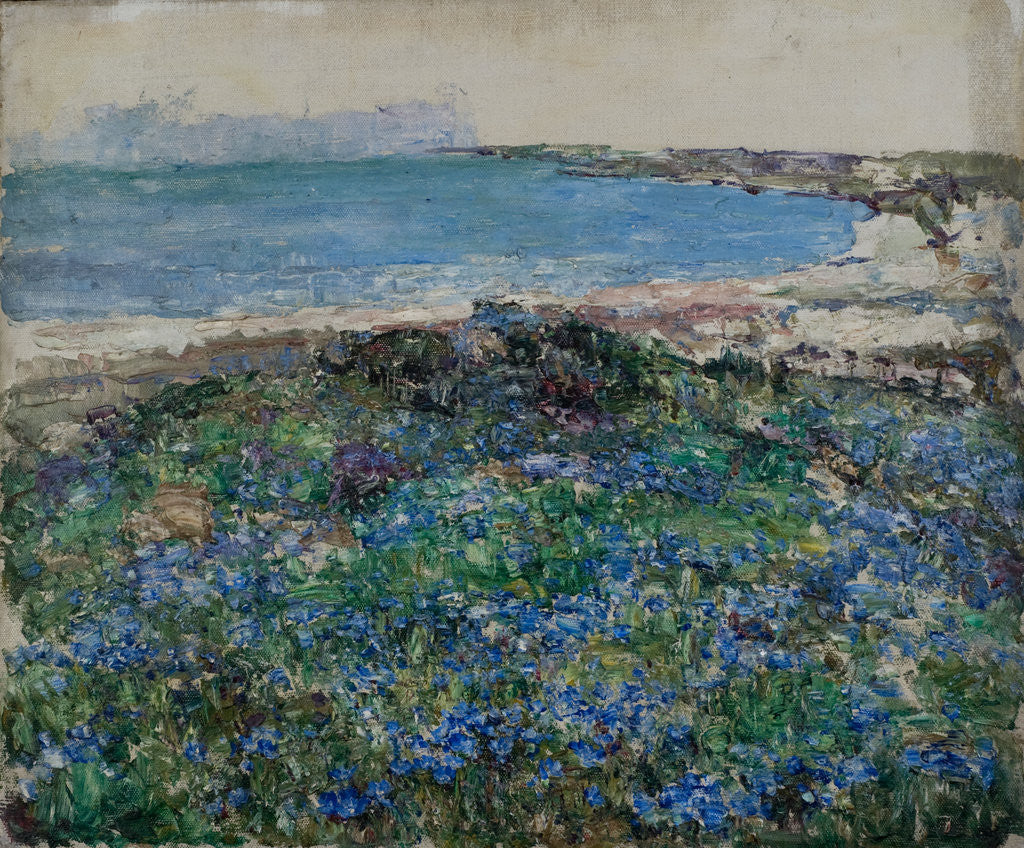 Detail of Blue Flax, Brighouse Bay by Edward Atkinson Hornel