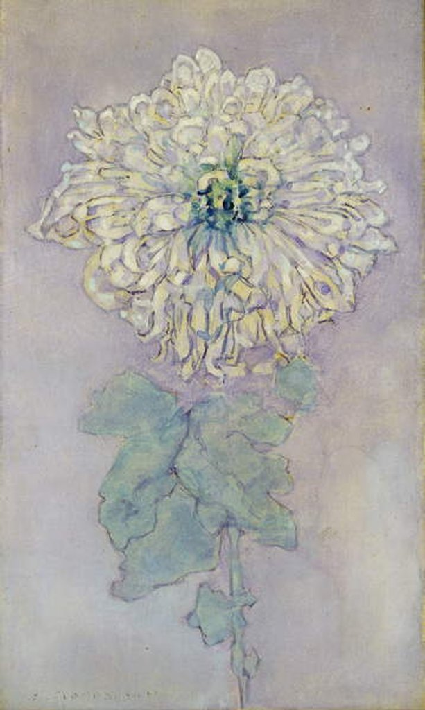 Detail of Chrysanthemum by Piet Mondrian