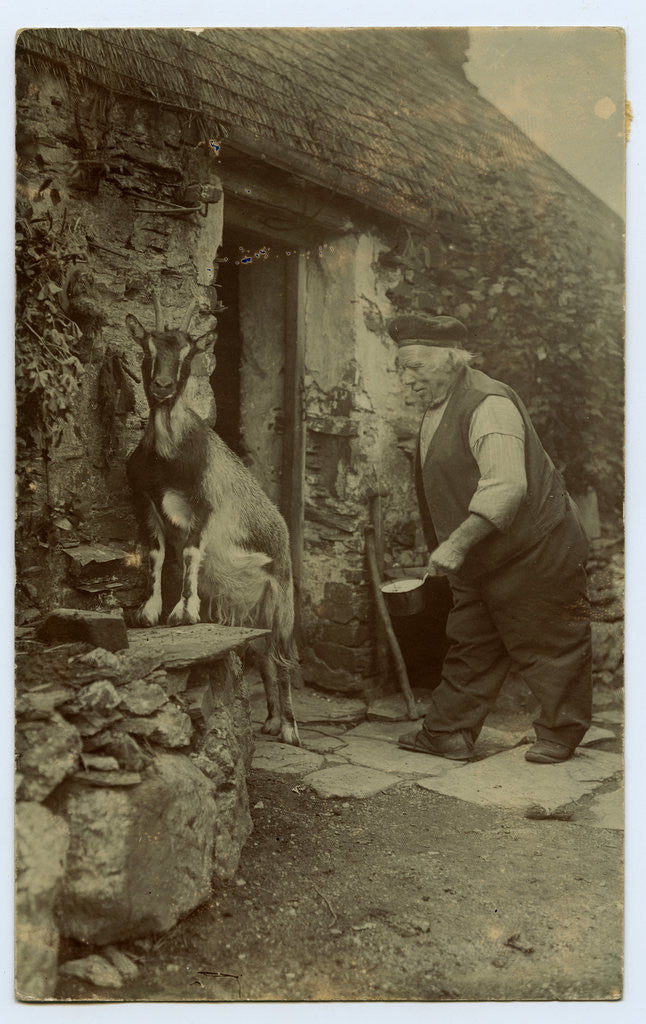 Detail of John Kinnish ('Old Pete') outside his cottage - with goat by Thomas Horsfell Midwood