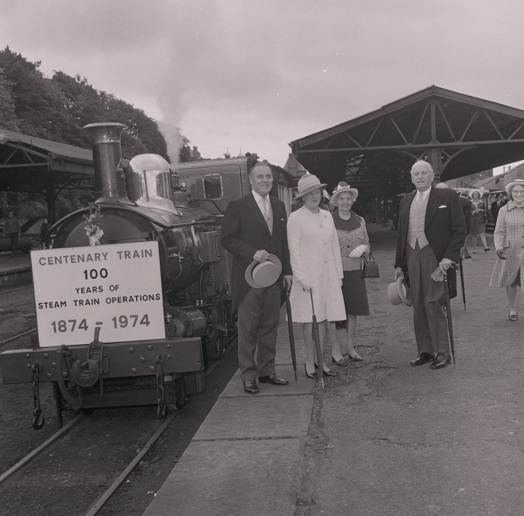 Detail of Isle of Man Railway Centenary , Port Erin line by Manx Press Pictures