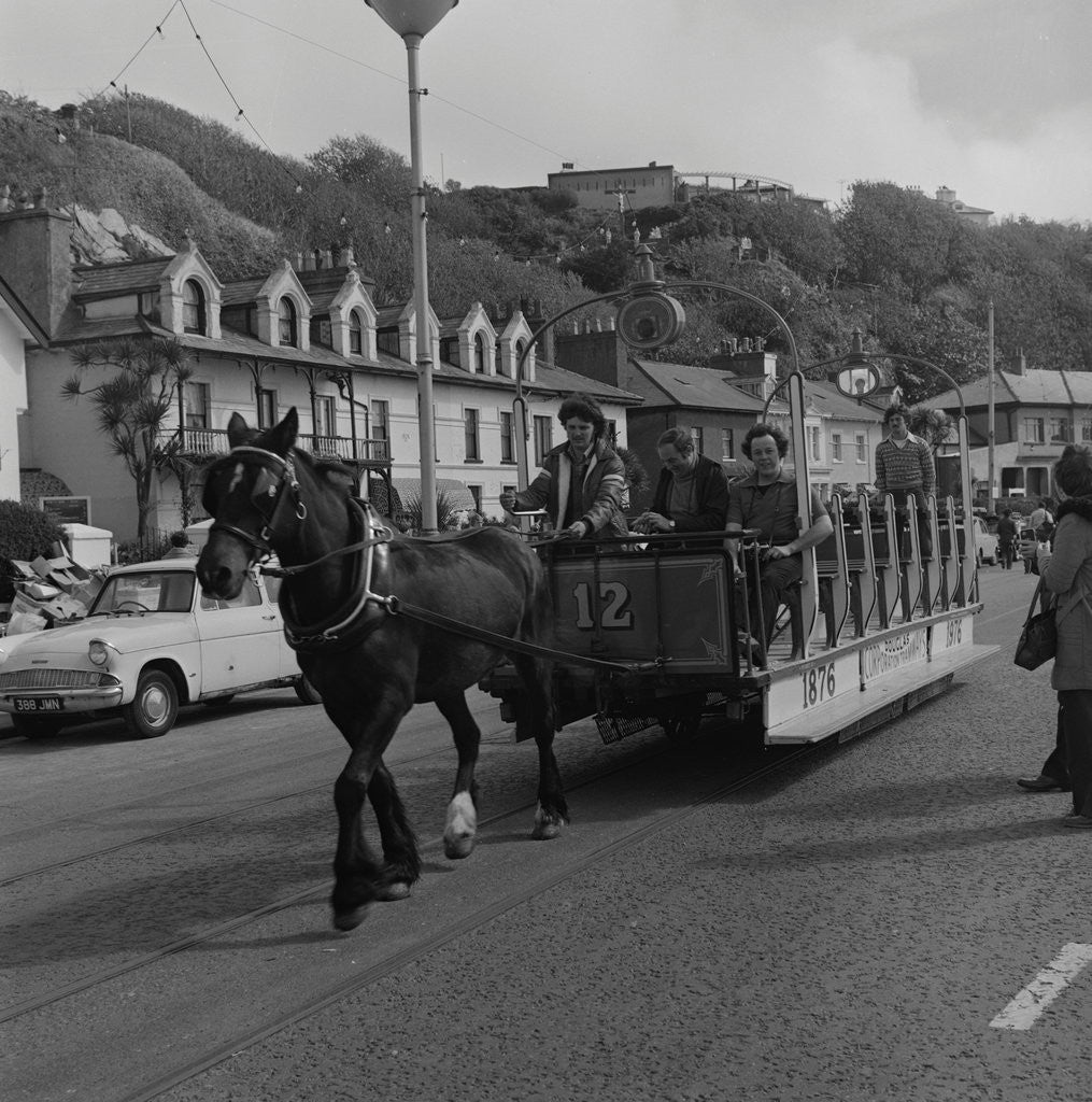 Detail of Horse tram parade, Douglas Promenade by Manx Press Pictures