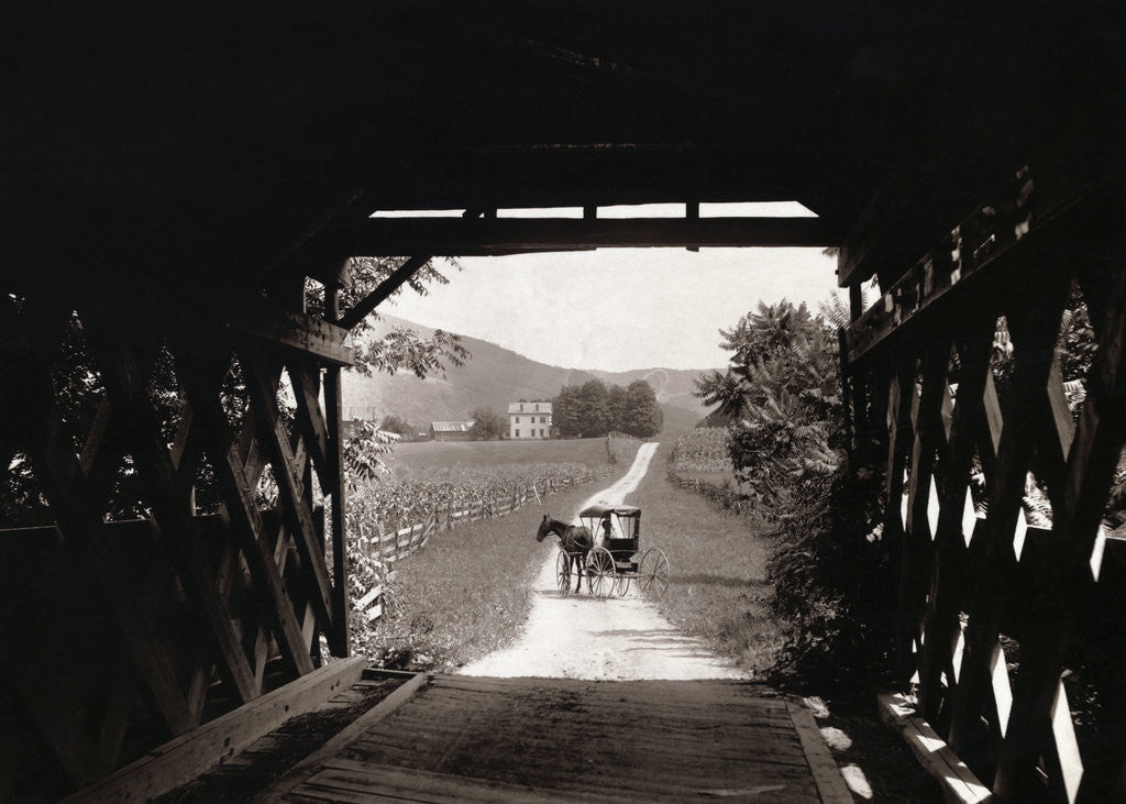 Detail of Horse and Buggy Viewed Through Covered Bridge by Corbis