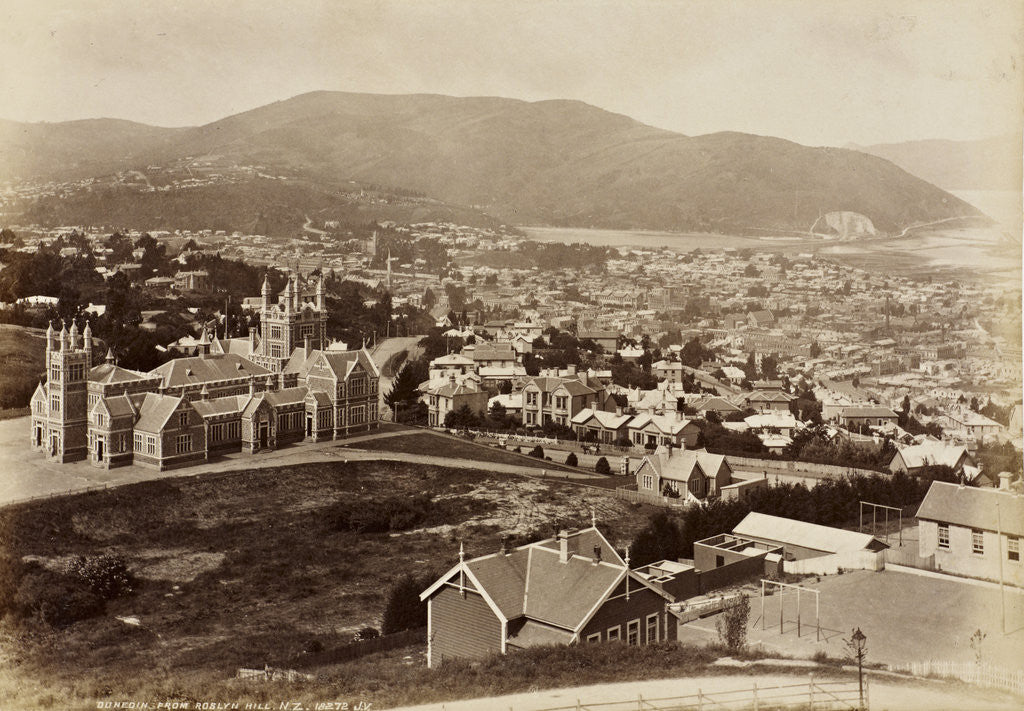Detail of Dunedin from Roslyn Hill, New Zealand by James Valentine