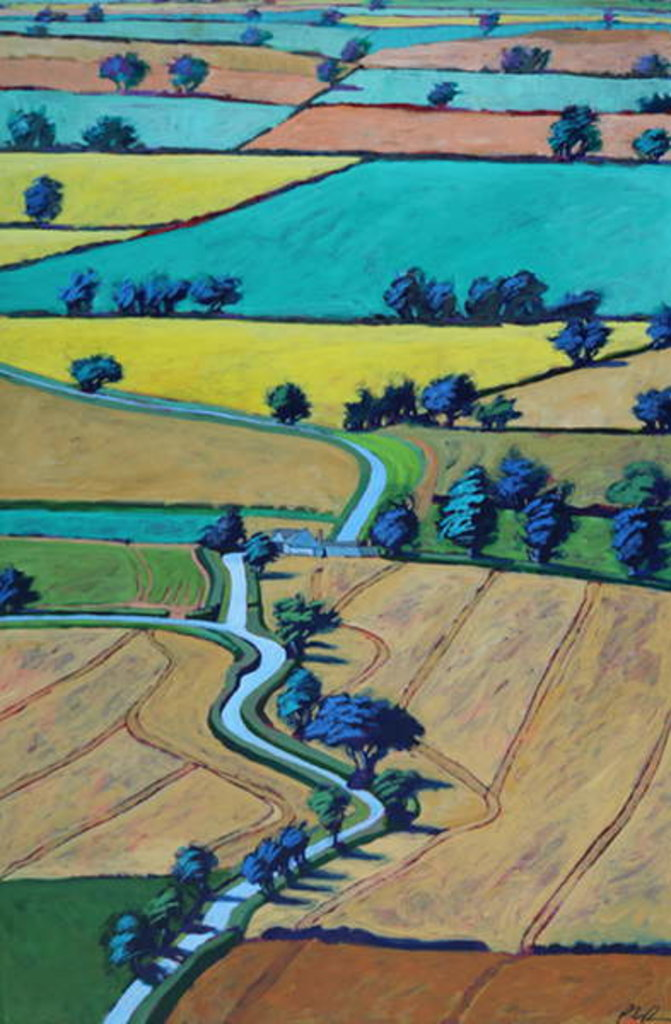 Detail of Lane in summer by Paul Powis