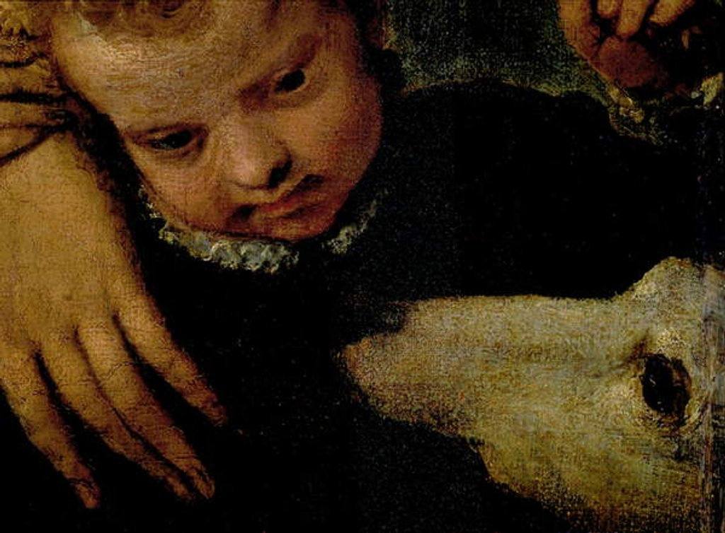 Detail of Portrait of a Woman with a Child and a Dog by Veronese