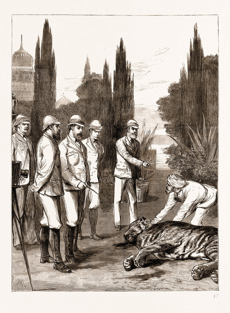 The Prince Of Wales's First Tiger: Jeypore, India
