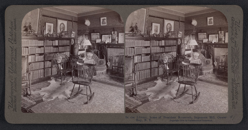 Detail of In the library, home of President Roosevelt, Sagamore Hill, Oyster Bay, N.Y by Anonymous