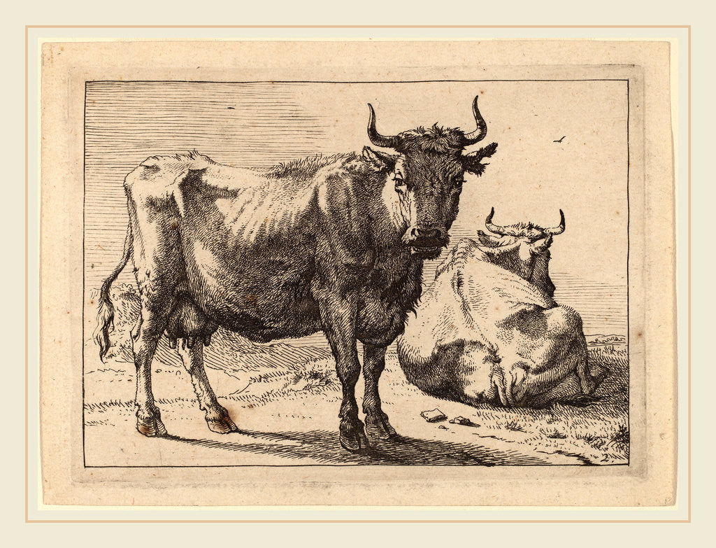 Detail of A Cow Standing and Another Lying Down, 1650 by Paulus Potter
