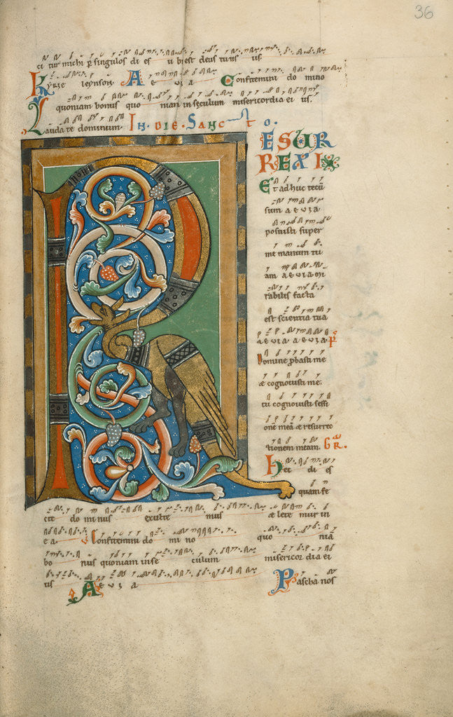 Detail of Decorated Initial R by Anonymous