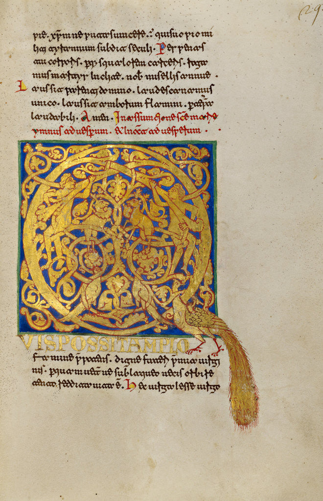 Detail of Inhabited Initial Q by Anonymous