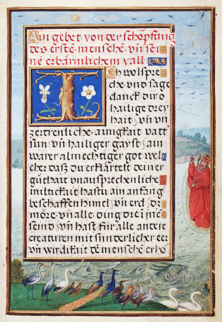 Detail of Border with the Creation of Birds and Fishes by Simon Bening
