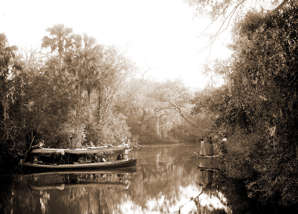 Detail of Boating on the Tomoka, Jackson, Steamboats, Rivers, United States, Florida, Tomoka River, 1880 by William Henry